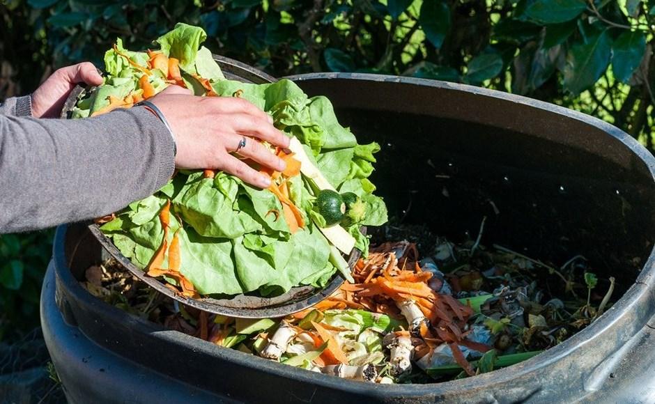 Pupuk Organik Dari Sampah Rumah Tangga